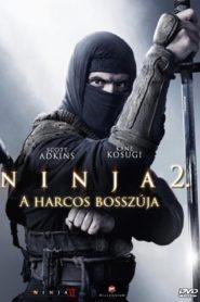 Ninja 2 – A harcos bosszúja
