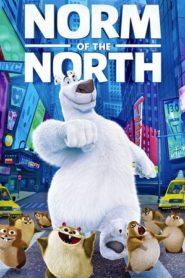 Norm, az északi