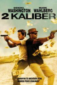 2 kaliber