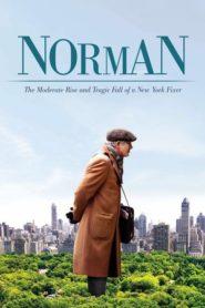 Norman: egy New York-i fixer mérsékelt tündöklése és tragikus bukása