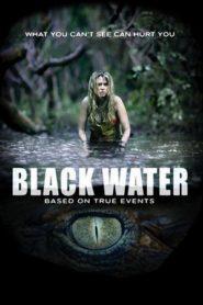 Halál a mocsárban online teljes film