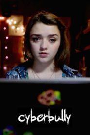 Az internetes zaklató