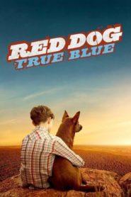 Vörös kutya – A kezdetek