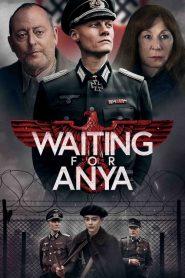 Aniára várva